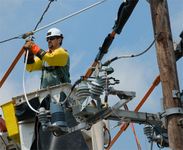 Lineman Working on Distribution Lines